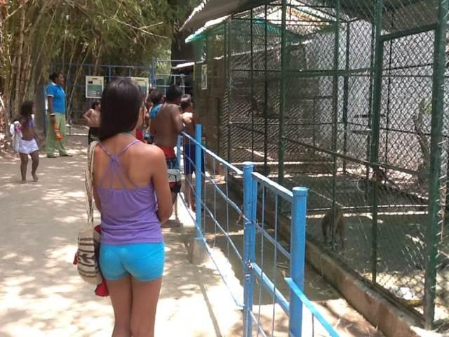 Visita al zoológico, Jornada de integración en Santa Marta